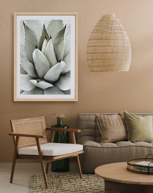 Succulent Botanic Print